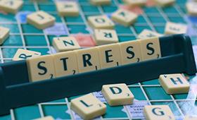 Повышение гормона стресса - кортизола